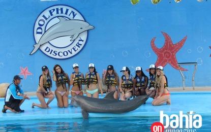 Modelos de Victoria's Secret nadan con delfines en Dolphin Discovery