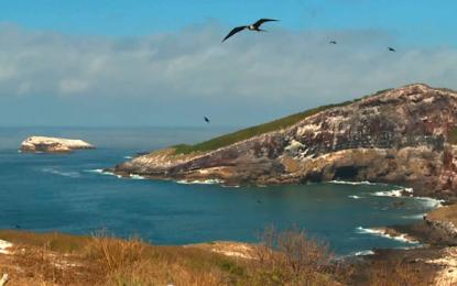 La magia de Riviera Nayarit en Discovery Channel