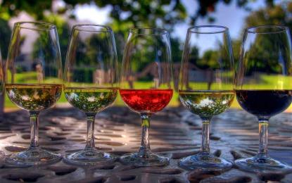 La Fiesta del vino llega a Puerto Vallarta con el Wine Fest 2014