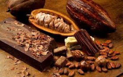 Con Museo del Chocolate impulsan el cacao mexicano