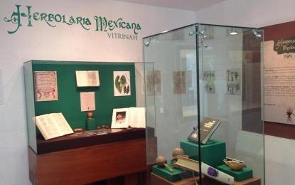 """Exposición de herbolaria mexicana en el Museo de Arqueología """"El Cuale"""""""