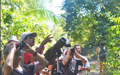 Inician cursos para conservación de Aves en Riviera Nayarit