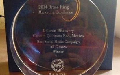 Premian a Grupo Dolphin Discovery por mejor campaña en redes sociales