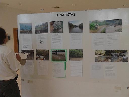 El jurado tuvo que observar la exposición fotográfica y los videos para designar a los ganadores.