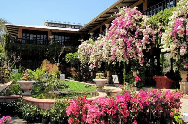 On bahia magazine destinos el jard n bot nico de for Bodas en el jardin botanico