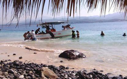 3ra. Limpieza de playa, boca de ríos y fondo del mar en Guayabitos