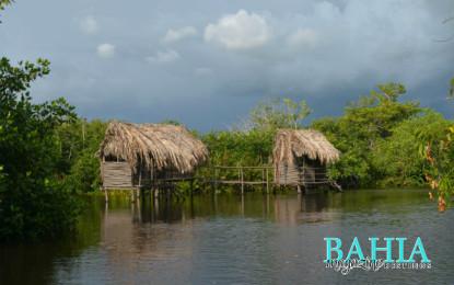De Tour:  Parque Nacional La Tovara en San Blas