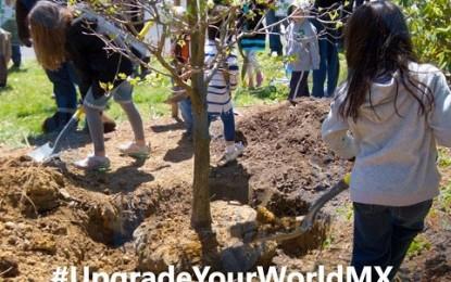 Vota por Fundación Punta de Mita en #UpgradeYourWorld