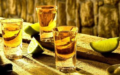 Construirán Museo del Tequila en Puerto Vallarta