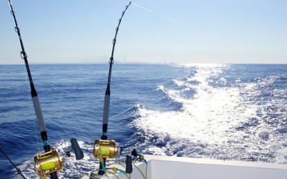 Alistan cañas y carretes para el 60 Torneo de Pesca Marlín & Pez Vela