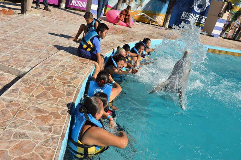 delfinoterapia-aquaventuras-park2