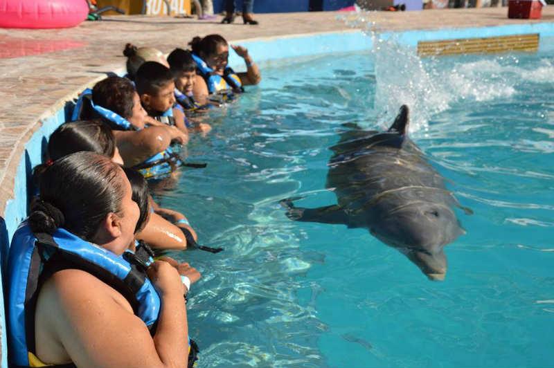 delfinoterapia-aquaventuras-park4