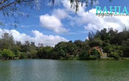 DE TOUR: Lago El Molino, un oasis en Compostela