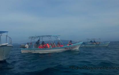 Paseos a las Islas Marietas no serán suspendidos: Secturnay