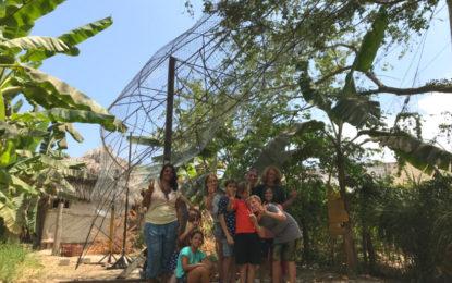 Invitan a creación colectiva de Ballena Jorobada en San Pancho