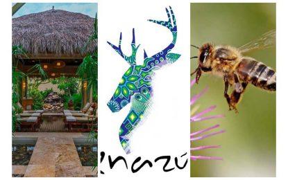 Noti-Hoteles Riviera Nayarit